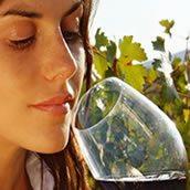 Lä ruta del Vino