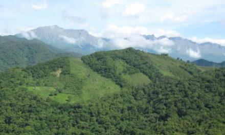 Parque Nacional Baritú
