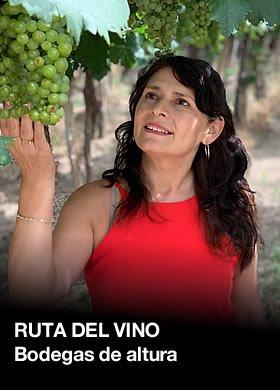 Turismo en Salta Ruta del Vino